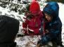 Winter im Wald 2013